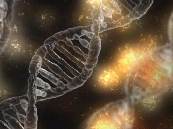 ADN_table ronde