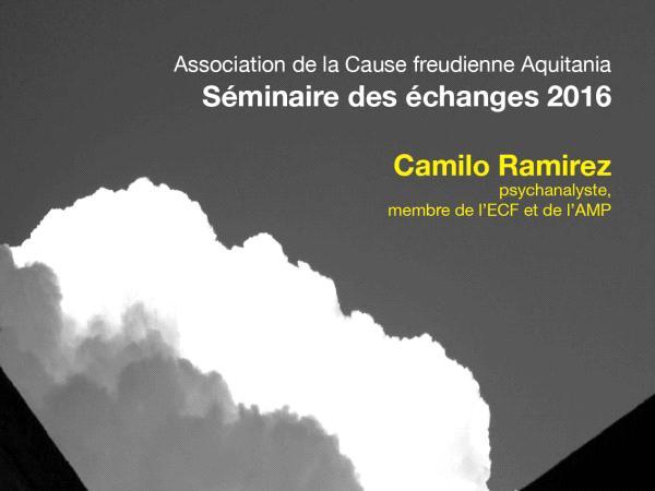 Séminaire des échanges 2016 - Camilo Ramirez