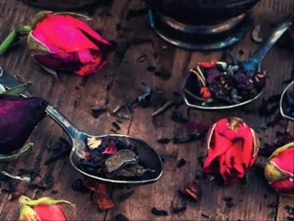 Gentilles filles, braves garçons - Roopa Farooki - éditions Gaïa