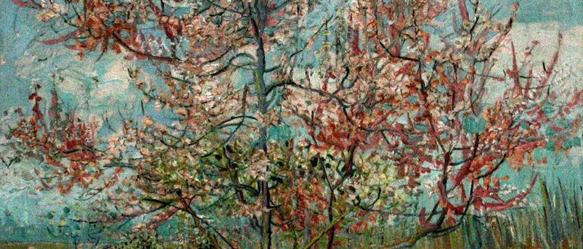 832px-Van_Gogh_-_Pink_peach_trees_-_Souvenir_de_Mauve.JPG