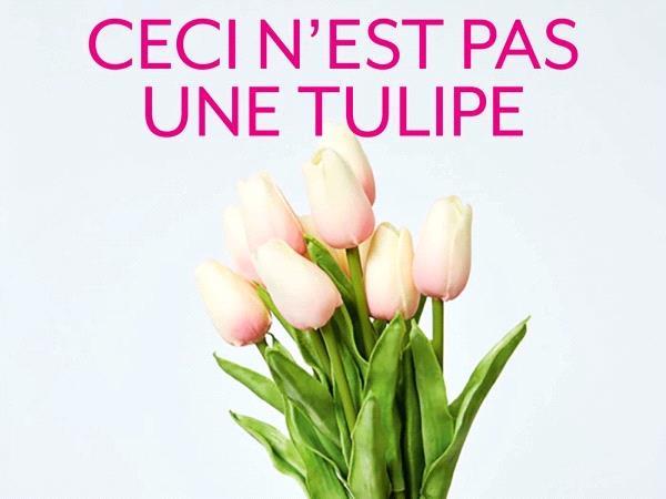 ceci n'est pas une tulipe yves michaud couv.jpeg