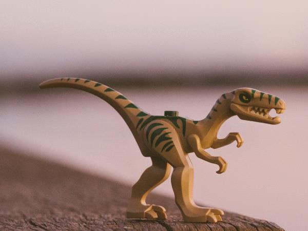 Je cherche un livre sur les dinosaures.jpg