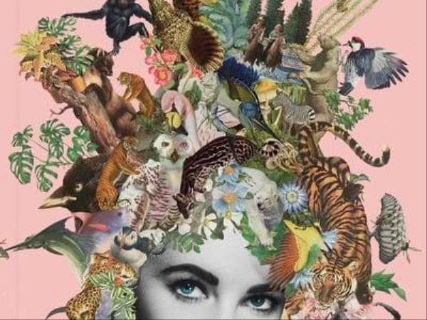 EXTRAORDINARY THINGS TO CUT OUT AND COLLAGE / Laurence King