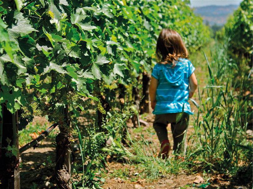 Les apprenti(e)s vigneron(nes).jpg