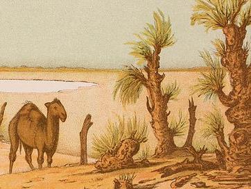 naturalistes1.jpg