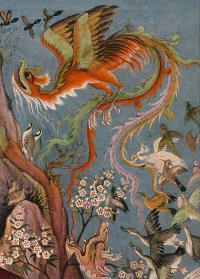 Le cantique des oiseaux : illustré par la peinture en islam d'Orient