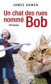 Un chat des rues nommé Bob : témoignage