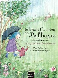 Le livre à compter de Balthazar : à la poursuite du lapin brun