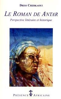 Le roman de Antar : une perspective littéraire et historique