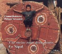 Le Népal : une racine entre deux pierres