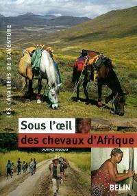 Sous l'oeil des chevaux d'Afrique
