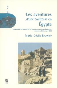 Les aventures d'une comtesse en Egypte : décembre 1863 à mars 1864 : récit