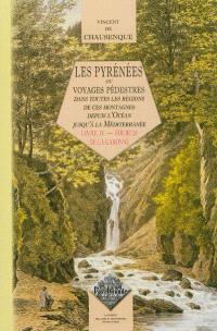 Les Pyrénées ou Voyages pédestres dans toutes les parties de ces montagnes depuis l'Océan jusqu'à la Méditerranée. Volume 4, Sources de la Garonne : Comminges