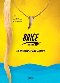 Brice de Nice : le grand livre jaune