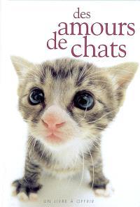 Des amours de chats