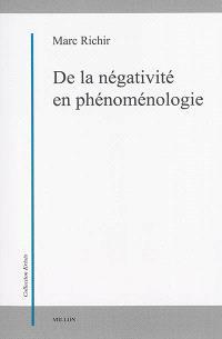 De la négativité en phénoménologie