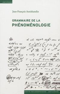 Grammaire de la phénoménologie