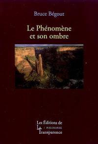 Recherches phénoménologiques sur la vie, le monde et le monde de la vie. Volume 2, Le phénomène et son ombre : après Husserl
