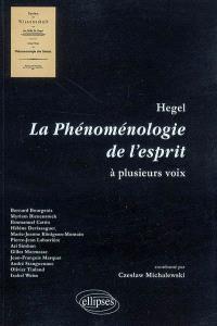 Hegel, la phénoménologie de l'esprit à plusieurs voix : actes du séminaire du bicentenaire de la phénomélogie de l'esprit proposé aux professeurs de philosophie de l'académie de Versailles (2005-2007)