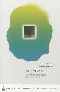 Spinoza : la raison à l'épreuve de la pratique