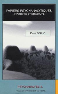 Papiers psychanalytiques. Volume 1, Papiers psychanalytiques : expérience et structure