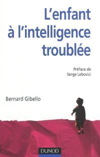 L'enfant à l'intelligence troublée : nouvelles perspectives en psychopathologie