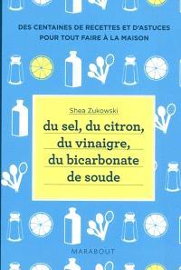 Du sel, du citron, du vinaigre, du bicarbonate de soude : des centaines de recettes et d'astuces pour tout faire à la maison