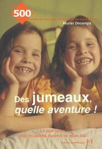 Des jumeaux, quelle aventure ! : le quotidien avec plusieurs enfants du même âge