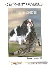 Citations et proverbes : chats et chiens