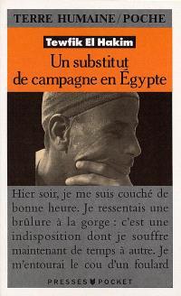 Un substitut de campagne en Egypte : journal d'un substitut de procureur égyptien