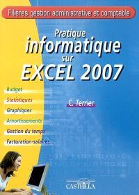 Pratique informatique sur Microsoft Excel 2007 : budget, statistiques, graphiques, amortissements, gestion du temps, facturation-salaires...