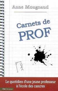 Carnets de prof : le quotidien d'une jeune professeur à l'école des cancres
