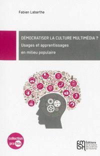 Démocratiser la culture multimédia ? : usages et apprentissages en milieu populaire