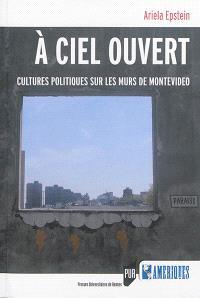 A ciel ouvert : cultures politiques sur les murs de Montevideo
