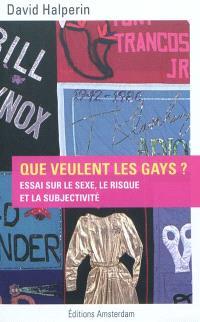 Que veulent les gays ? : essai sur le sexe, le risque et la subjectivité