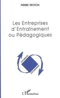 Les entreprises d'entraînement ou pédagogiques : entre apprentissage, expérience et insertion professionnelle