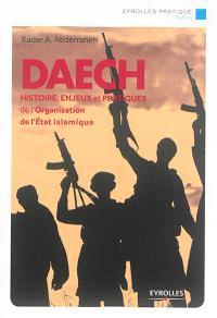 Daech : histoire, enjeux et pratiques de l'organisation Etat islamique