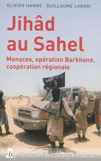 Jihâd au Sahel : menaces, opération Barkhane, coopération régionale