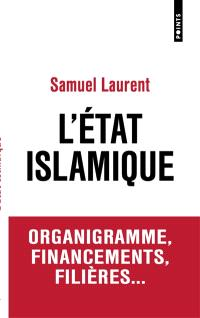 L'Etat islamique : organigramme, financements, filières...