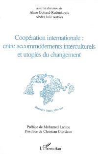 Coopération internationale : entre accommodements interculturels et utopies du changement