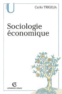 Sociologie économique : Etat, marché et société dans le capitalisme moderne
