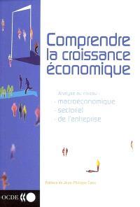 Comprendre la croissance économique : analyse au niveau macroéconomique, sectoriel, de l'entreprise