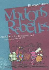 Moutons rebelles : Ardelaine la fibre développement local