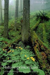 Nature primordiale : des forêts sauvages au secours de l'homme
