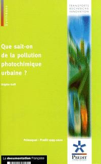 Que sait-on de la pollution photochimique urbaine ?