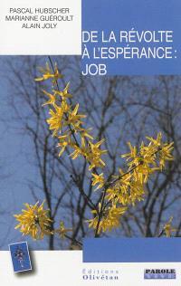 De la révolte à l'espérance : Job : conférences de Carême 2013