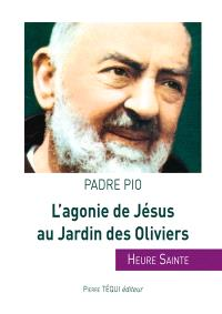 L'agonie de Jésus au jardin des Oliviers : heure sainte
