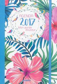 Agenda 2017 : mon année douceur