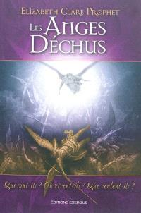 Les anges déchus : qui sont-ils ? Où vivent-ils ? Que veulent-ils ?