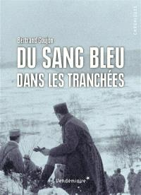Du sang bleu dans les tranchées : expériences militaires de nobles français durant la Grande Guerre
